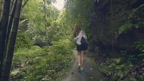 Туристская женщина идя на путь в тропическом лесе на зеленых деревьях и предпосылке завода Задний взгляд путешествуя девушка в эк видеоматериал