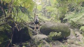 Туристская женщина идя на утесы в тропическом лесе на зеленой предпосылке джунглей Молодая женщина путешествуя в тропическом лесе сток-видео