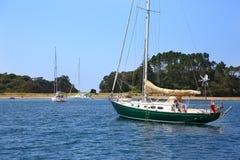 Туристская шлюпка, гавань Whitianga, Whitianga, полуостров Coromandel Стоковые Изображения