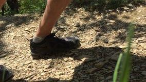 Туристские ноги шагая на путь леса пока пеший туризм в горе Hiker идя на грязную улицу пока взбирающся на гористых местностях видеоматериал