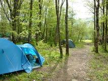 Туристские шатры в лесе на месте для лагеря Стоковое Изображение RF