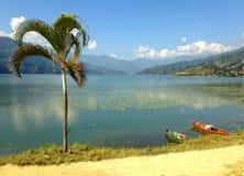 Туристские шлюпки и пальма озера Pheva Стоковые Изображения RF