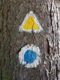 Туристский знак следа отмеченный на дереве Стоковые Изображения