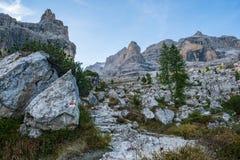 Туристский путь с красивым ландшафтом доломита на заднем плане, доломиты, Италия стоковые фото