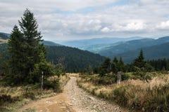 Туристский след в польских горах стоковая фотография rf