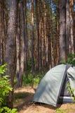Туристский шатер в лесе Стоковые Изображения RF