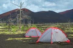 Туристский шатер в мертвой древесине - последствии катастрофического отпуска золы во время извержения вулкана в Tolbachik 1975 Стоковое фото RF