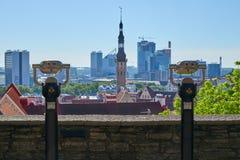 2 туристских бинокля в Таллине Стоковая Фотография RF