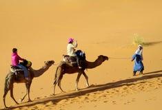 Туристское сафари на верблюдах в пустыне Стоковые Фото