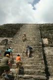 Туристы взбираясь майяский высокий висок в Lamanai, Белизе Стоковая Фотография RF