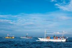 Туристы в различных маленьких лодках ища дельфины в Lovina, Стоковые Изображения