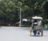 Туристы ехать Carromata Стоковые Изображения