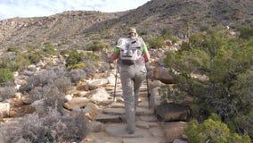 Туристы женщины вверх по холму на следе путем использование Trekking ручек, вид сзади сток-видео