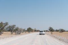 Туристы ждать жирафа для того чтобы пересечь дорогу гравия Стоковая Фотография