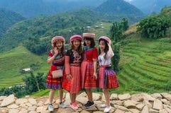 Туристы молодых женщин представляя в традиционных въетнамских платьях Стоковые Фото