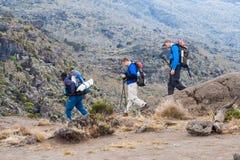 Туристы направляющего выступа ведущие на держателе Килиманджаро Стоковые Изображения RF