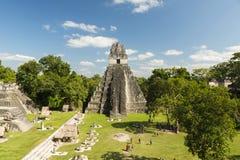 Туристы на виске ягуара в Tikal Стоковая Фотография RF