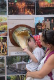 Туристы на горячих источниках Hamat Gader Стоковые Изображения