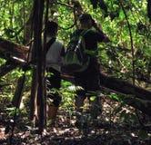Туристы на экспедиции идя через тропический лес в Сулавеси стоковая фотография rf