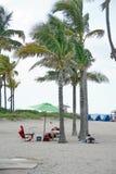 Туристы под пальмой на пляже Dania стоковая фотография