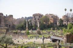 Туристы посещая римский форум Стоковые Изображения RF