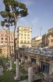 Туристы посещая римский форум Стоковое Изображение
