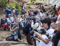 Туристы фотографируют подготовка для церемонии быка скача Turmi, долина Omo, Эфиопия Стоковая Фотография RF