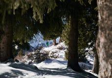 Турист в горах стоковая фотография