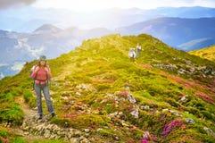 Турист девушки в горах с рюкзаком в заходе солнца Стоковая Фотография RF