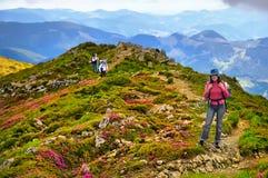 Турист девушки в горах с рюкзаком Стоковое Изображение