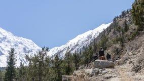 Турист едет лошадь на горе на пути к Fairy лугу стоковое изображение rf