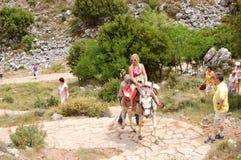 турист женщины осла Стоковое фото RF