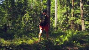 Турист женщины с рюкзаком за ей назад гуляя через стрельбу леса от задней части сток-видео
