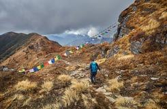 Турист на треке горы Гималаев стоковая фотография rf