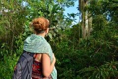 Турист на trekking в джунглях на Доминиканской Республике стоковые изображения