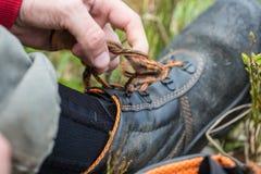 Турист развязывает пешим ботинкам Стоковое Фото