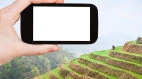 турист фотографирует террасы риса в Longsheng Стоковое фото RF