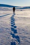 турист Стоковая Фотография RF