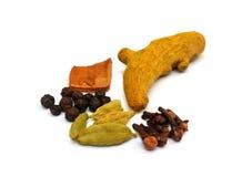 Турмерин, кардамон, специи гвоздичных деревьев Стоковые Изображения RF