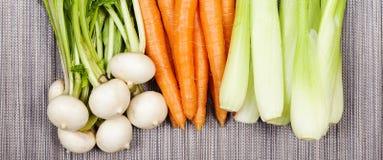 Турнепс, морковь и сельдерей Стоковые Фотографии RF