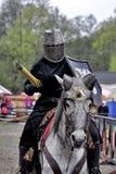 Турнир рыцаря Стоковое фото RF