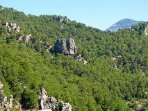 Турция. Зеленый каньон. Вертикальные скалы Стоковое Фото