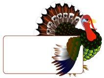 Турция с знаменем Стоковое Фото