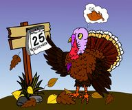 Турция с календарем 1 Стоковые Фотографии RF