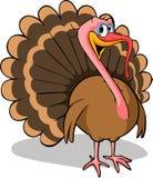 Турция Стоковое фото RF