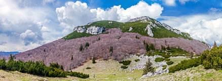 Тускловатый magnificence Kamnik†«Savinja высокогорный Словения Стоковые Изображения RF