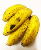 Тухлые плохие желтые бананы с предпосылкой тени Стоковое Изображение RF