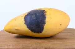 Тухлое манго Стоковое Изображение RF