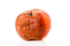 Тухлый крупный план яблока Стоковые Изображения RF