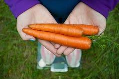 Тучная женщина хочет потерять владения веса в сложенных руками морковах шлюпки 3 больших оранжевых свежих Стоковые Изображения RF